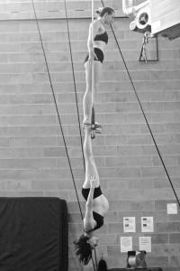 preggo acrobat 2