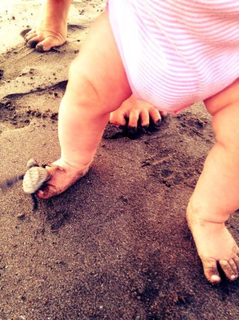 luna turtle toes